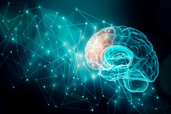 Comparative Efficacy of Commonly Used Transcranial Magnetic Stimulation Clinical Protocols for Posttraumatic Stress Disorder and Depression